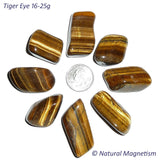 Large Tiger Eye Tumbled Stones From Africa AKA Tiger's Eye