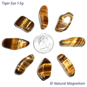 Small Tiger Eye Tumbled Stones From Africa AKA Tiger's Eye