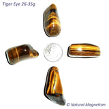 X-Large Tiger Eye Tumbled Stones From Africa AKA Tiger's Eye