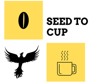 seed to cup coffee logo