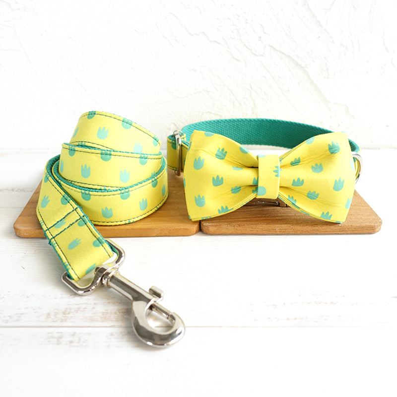 LITTLE FOOTPRINTS - Collar and Leash Set