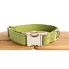LIGHT GREEN - Personalized Dog Collar