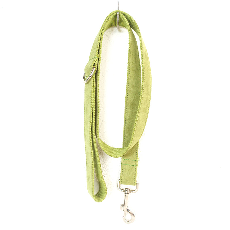 LIGHT GREEN - Personalized Dog Leash