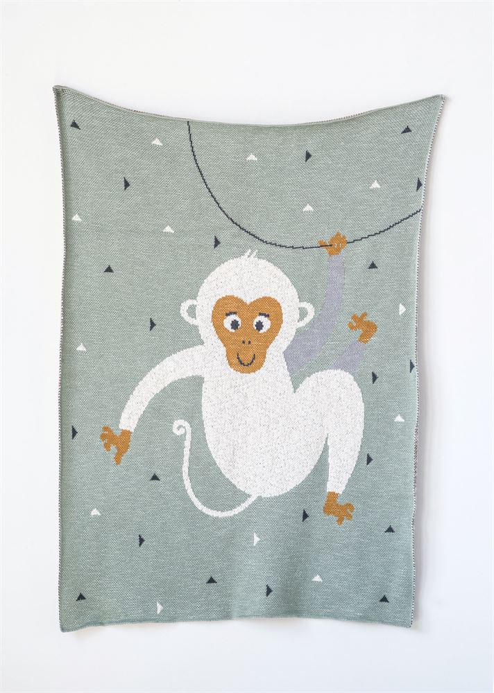 Cotton Monkey Knit Baby Blanket in Mint