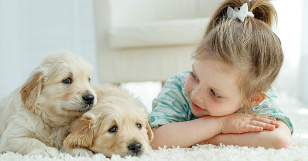 How To Teach Your Children To Love and Respect Animals