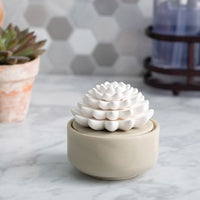Porcelain Airome Diffuser with Peppermint Oil - Succulent-The Pink Pigs, A Compassionate Boutique