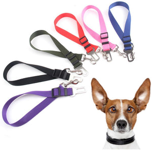Adjustable Nylon Doggie Seatbelt-Keep Your Dog Safe in the Car! - The Pink Pigs, Fine Jewels and Gifts for People who Love Animals!