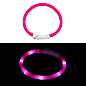 LED Lighted Collars to Keep Pets SAFE at Night!  Rechargeable - The Pink Pigs, Fine Jewels and Gifts for People who Love Animals!