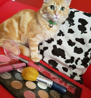 Here is a great read by one of our customers about cruelty free makeup products!!!!