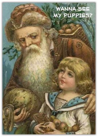 Christmas Card - Puppies Santa talking to a young child