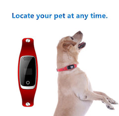 GPS Location and Activity Monitor Dog Collar