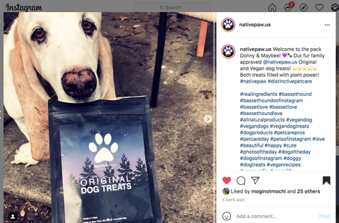 "Doni, Basset Hound, feels really good after eating Native Paw Treats, the healthy all natural dog cookies are yummy and his humans say, ""don't tell him they are healthy"" skin care, his skin and fur is so soft."