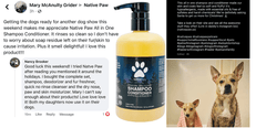 three reviews in one image of how awesome our, dry shampoo, all in one shampoo and conditioner, are as they rinse clean, made of all natural ingredients, aloe is the first ingredient, silky smooth fur, puppy shampoo, adult dog shampoo, senior dog shampoo, dog shampoo for allergens, dog shampoo for hot spots,