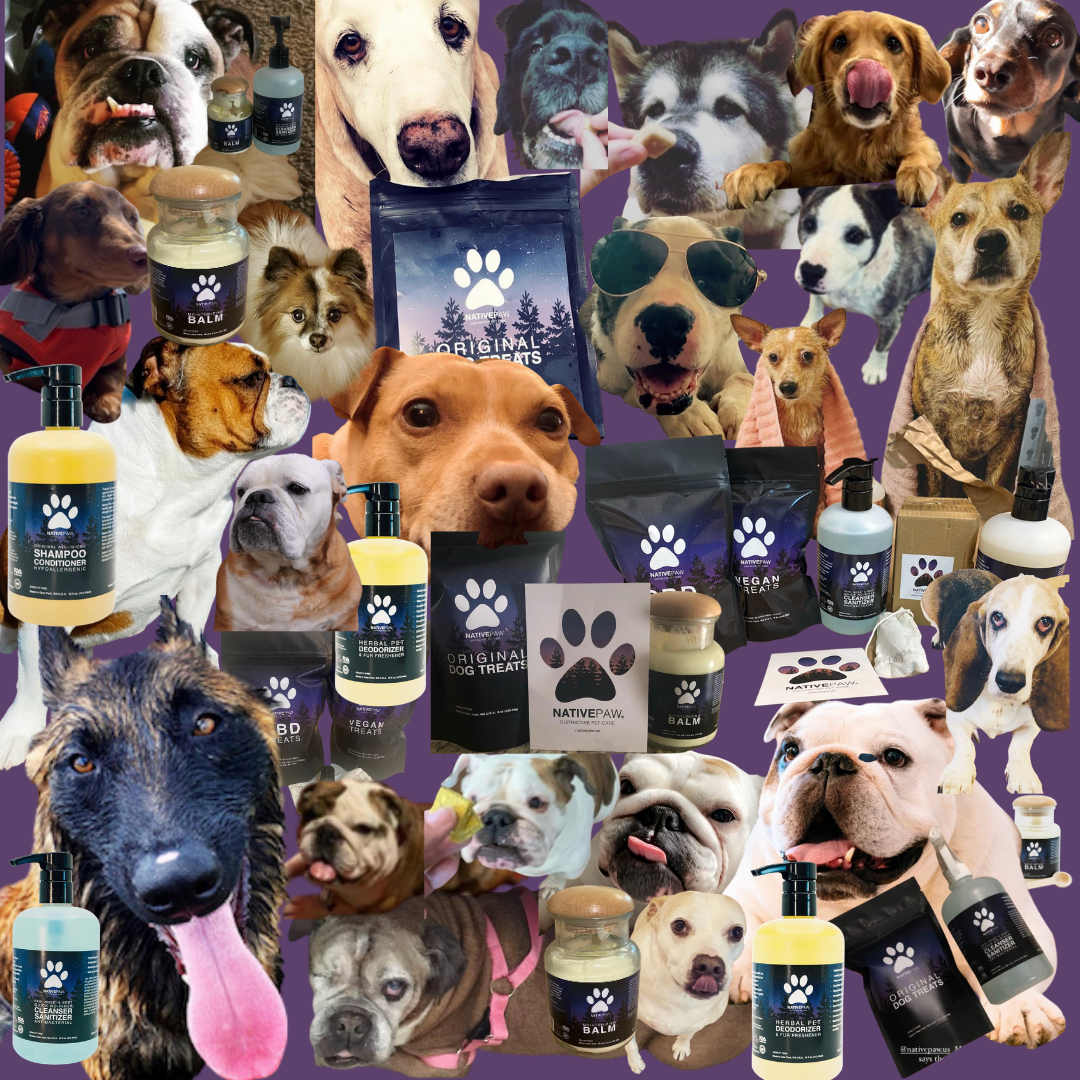 dog care products with dogs who use the products, reviews are from some of these dogs, picture includes dog shampoo, treats, vegan, dry shampoo, stop licking paws cleanser, dry shampoo disinfectant, dry nose balm, relax and sooth roll-on, collage