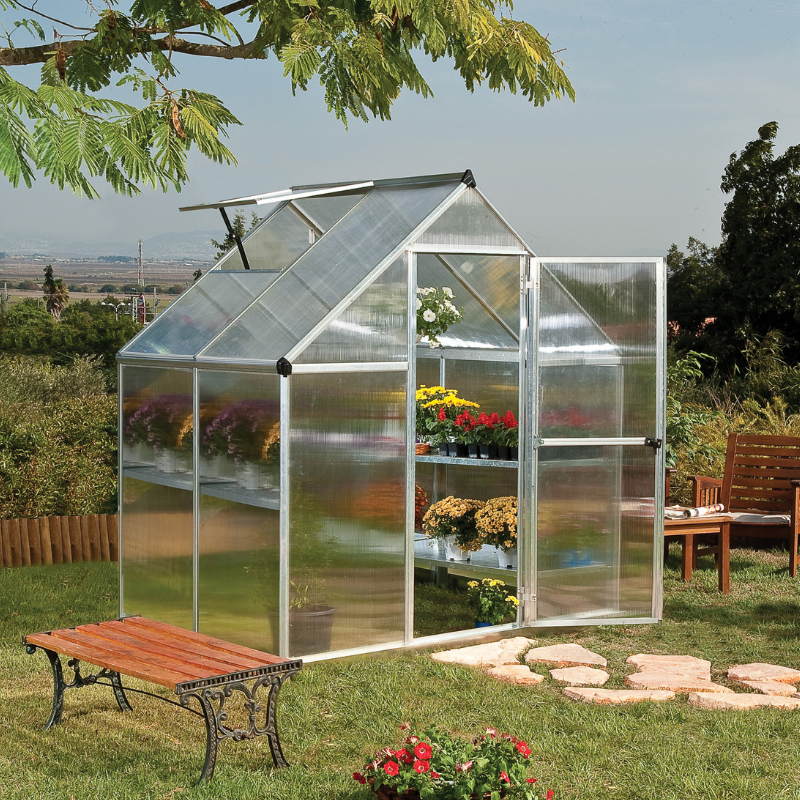 Palram Mythos 6' x 4' Greenhouse Nature Series - Silver - HG5005