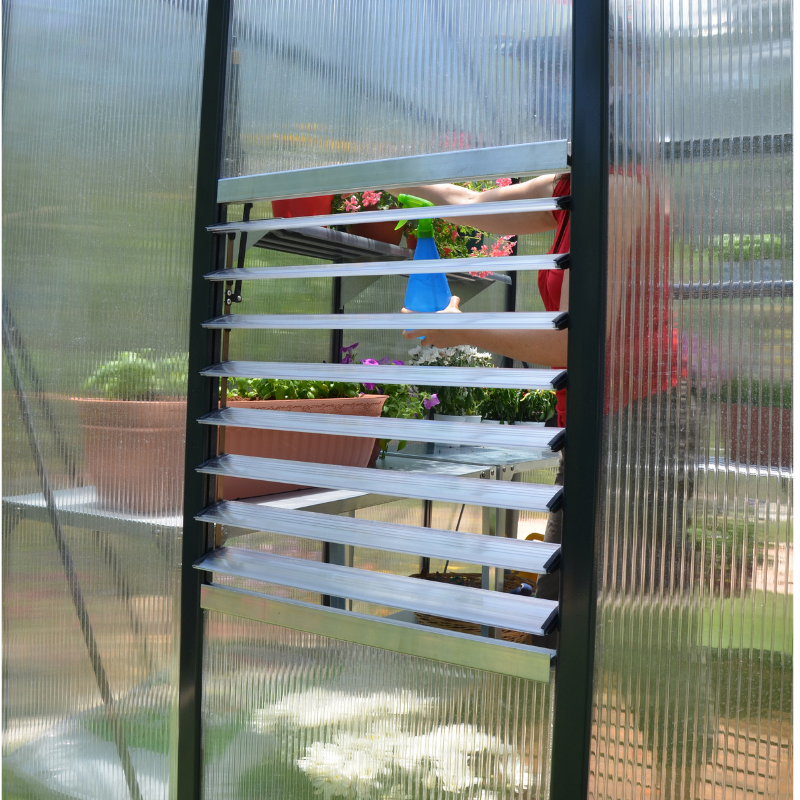 Palram Glory 8' x 8' Greenhouse - HG5608