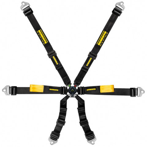 Schroth Enduro Harness 2x2