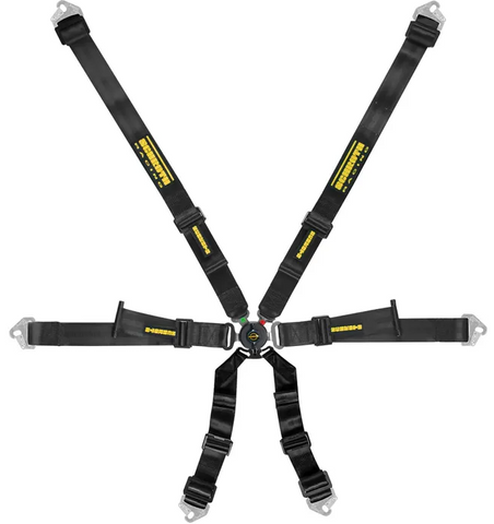 Schroth Profi 2x2 Harness
