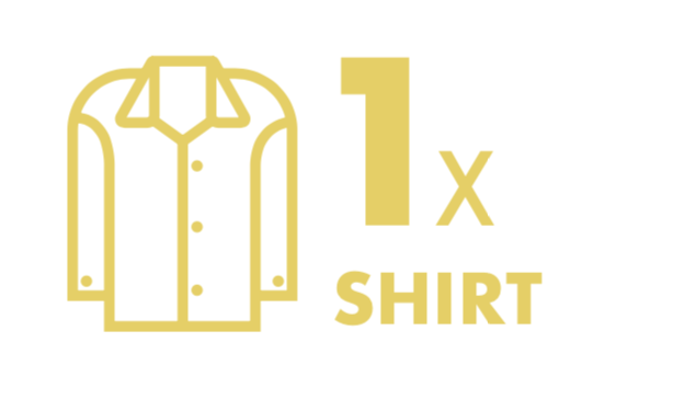 Dry Cleaning: 1 Shirt