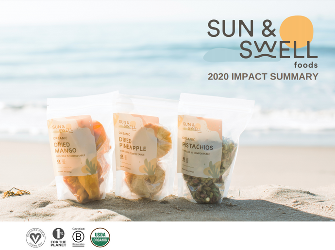 Sun & Swell 2020 Impact Report
