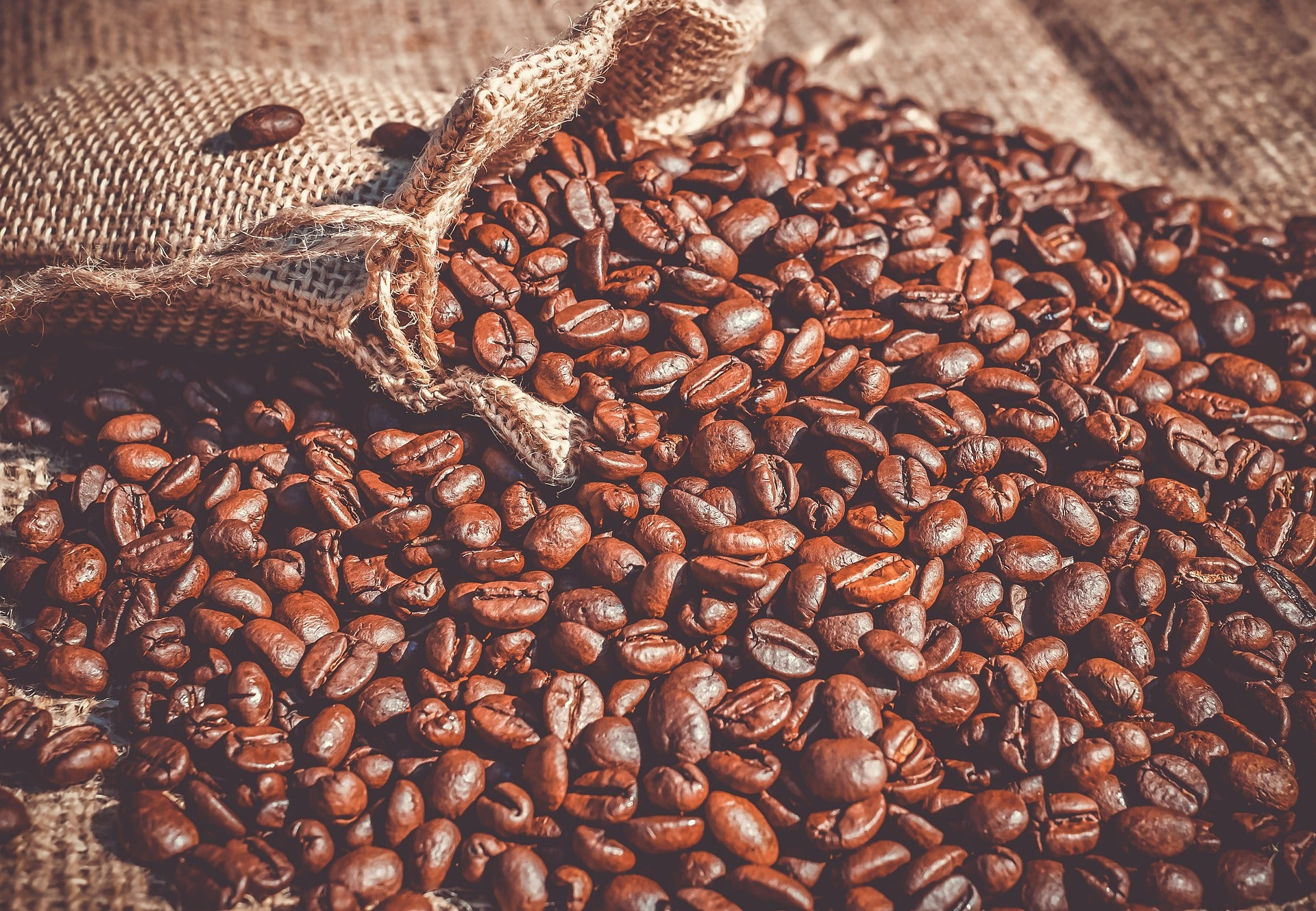 colombian specialty coffee beans wholesale bulk freshly roasted responsible fair trade