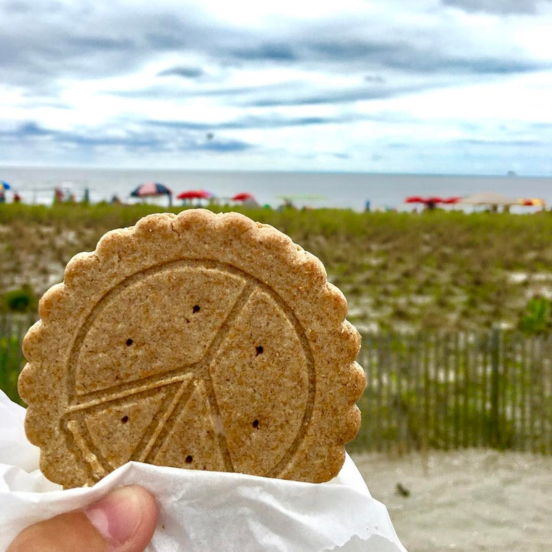 Peace Pie at the beach