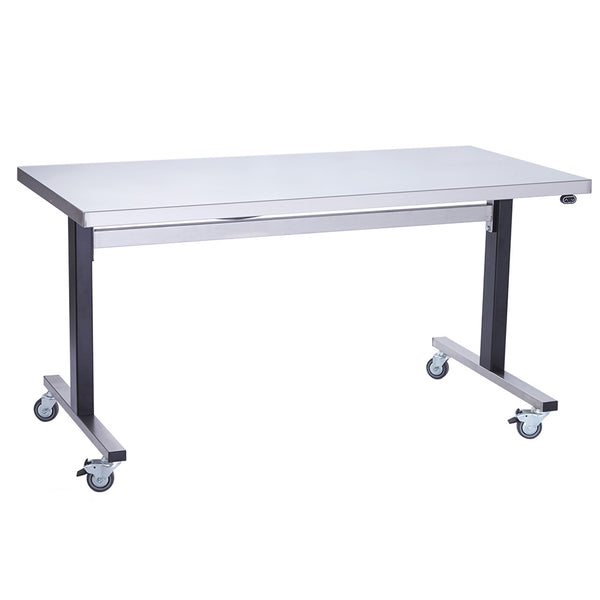 Parry Stainless Height Adjustable Table / Workstation