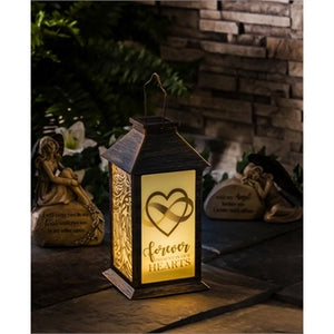 Evergreen -  Solar Lantern, Forever Present in Our Hearts