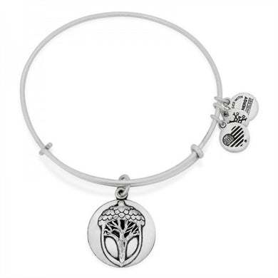 Alex and Ani - Unexpected Miracles II Expandable Charm Bangle, Silver Finish