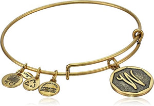 "Alex and Ani -Letter ""W"" Expandable Charm Bangle, Gold Finish"