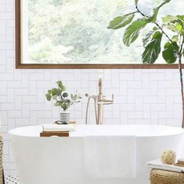 Cultivate your green thumb by adding these plants to your bathroom