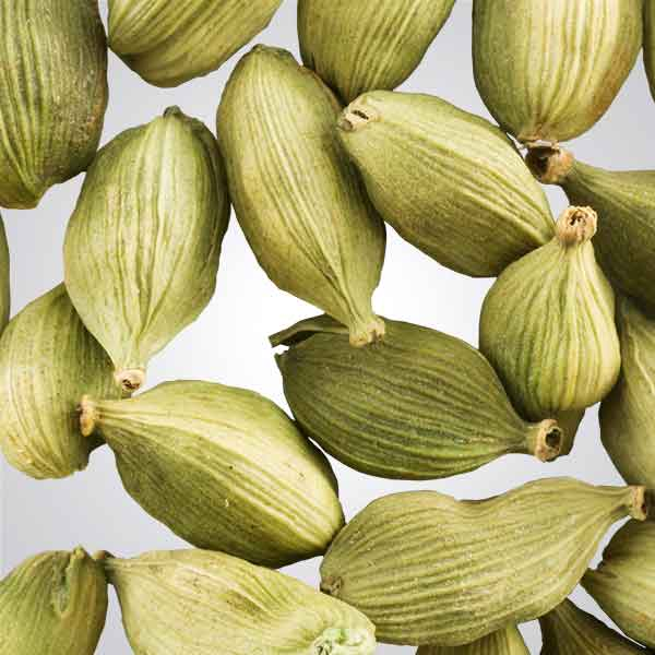 Photo of Cardamom pods