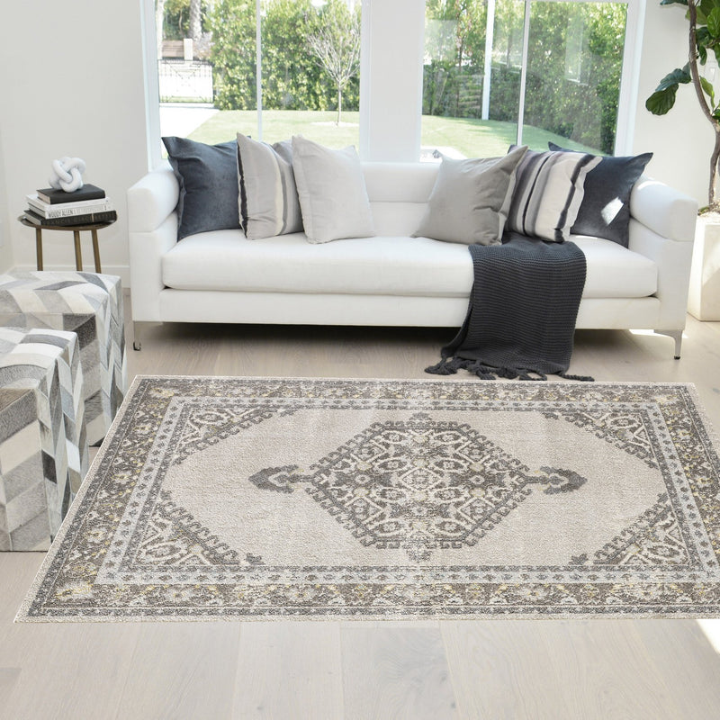 Traditional Rug for Living Room Antiqued Oriental Gray and White Area Rug Boho Décor Rugs for Bedroom