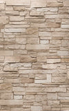 A Ledgestone Vertical 4x8' DP2905