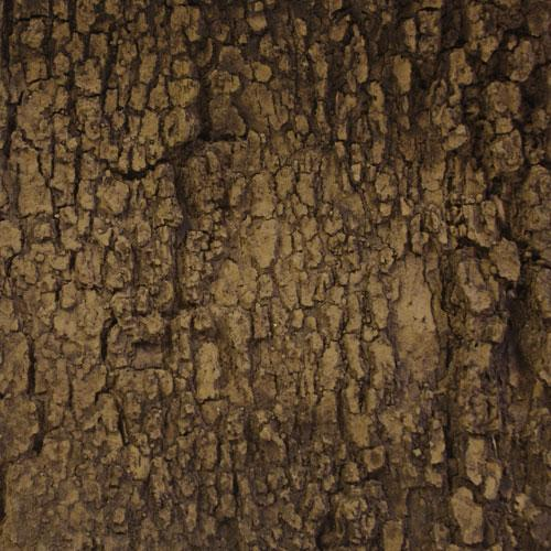 Flexbark- Oaks, Box Elder, Ash FB3503 Fauxstonesheets