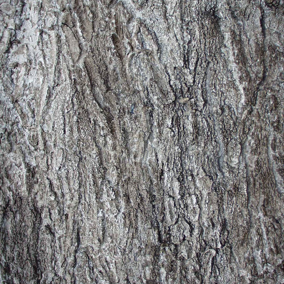 Flexbark- Pin Oak, Maple, Oaks FB3513 -FB3513- Fauxstonesheets