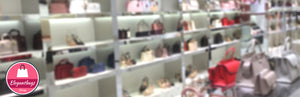 Why are Women's Handbags So Expensive?