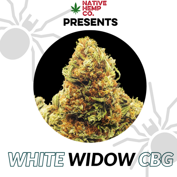 White Widow CBG