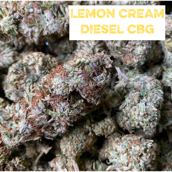 Lemon Cream Diesel CBG