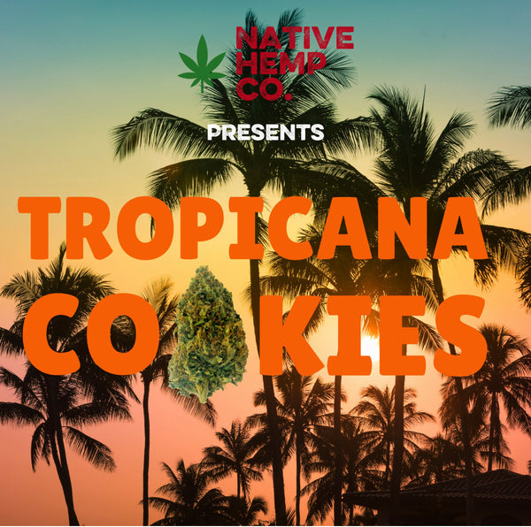 Tropicana Cookies Hemp
