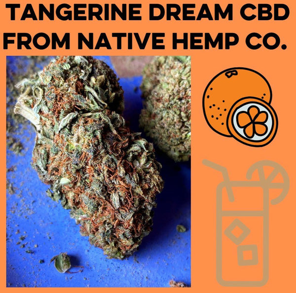 Tangerine Dream HEMP