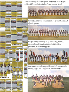 France: Line Infantry in Trousers, 1812-15 (15 figures per company, separate eagle)