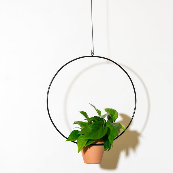 "NewMade LA: 18"" Hanging Circle Planter in Black"