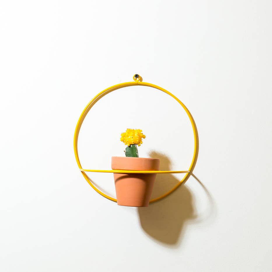 NewMade LA: Circle Wall Planter in Yellow