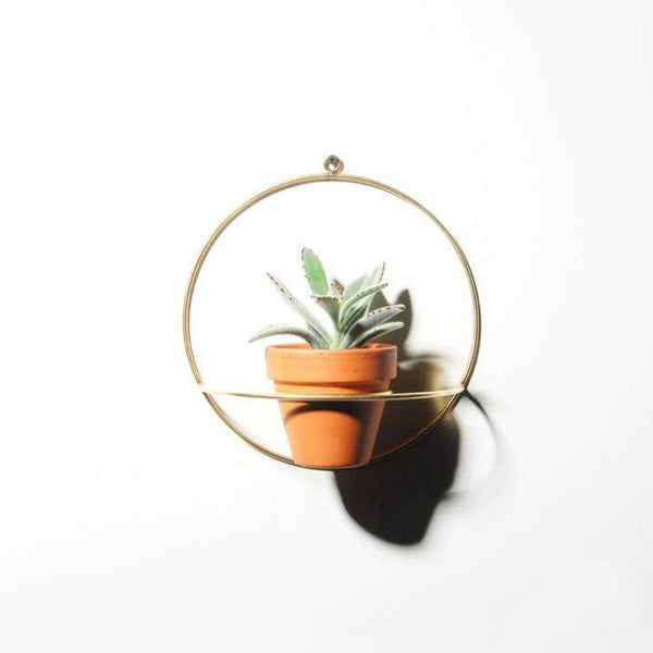 NewMade LA: Circle Wall Planter in Brass