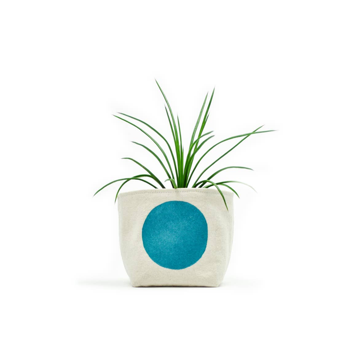 Gray Green Goods: Canvas Planter in Turquoise Dot