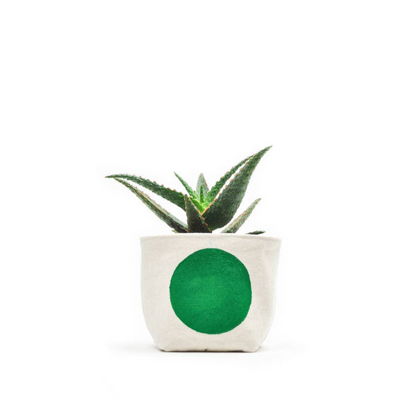 Gray Green Goods: Canvas Planter in Green Dot