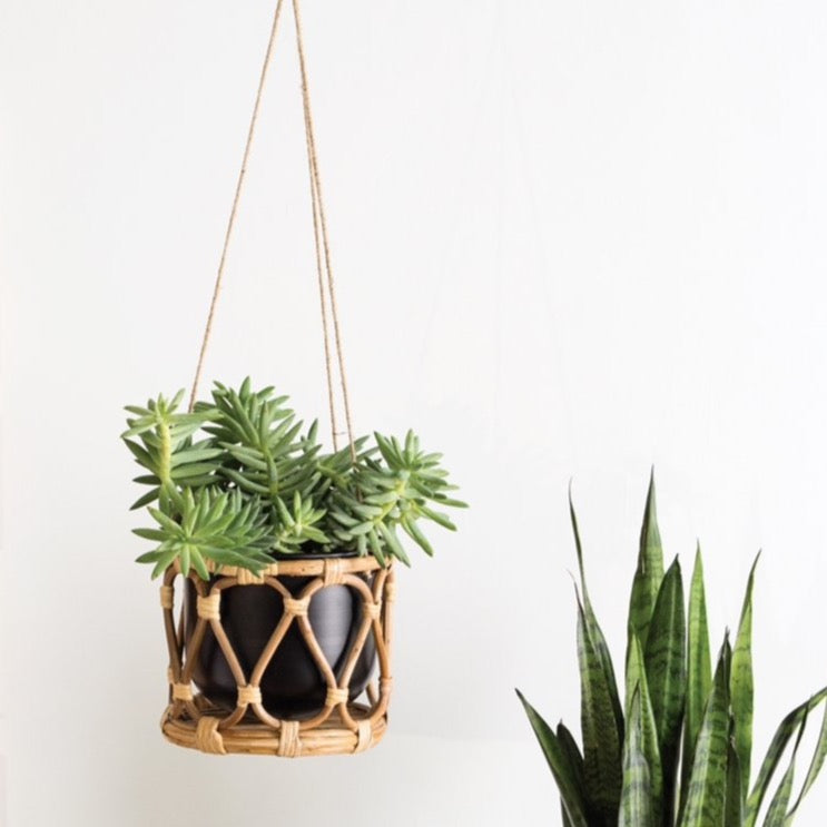 Sanibel Hanging Pot