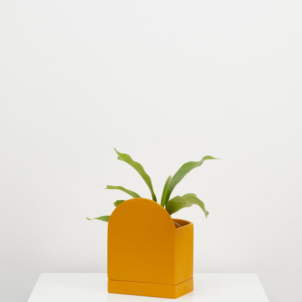 Capra Designs: Sol Planter in Golden