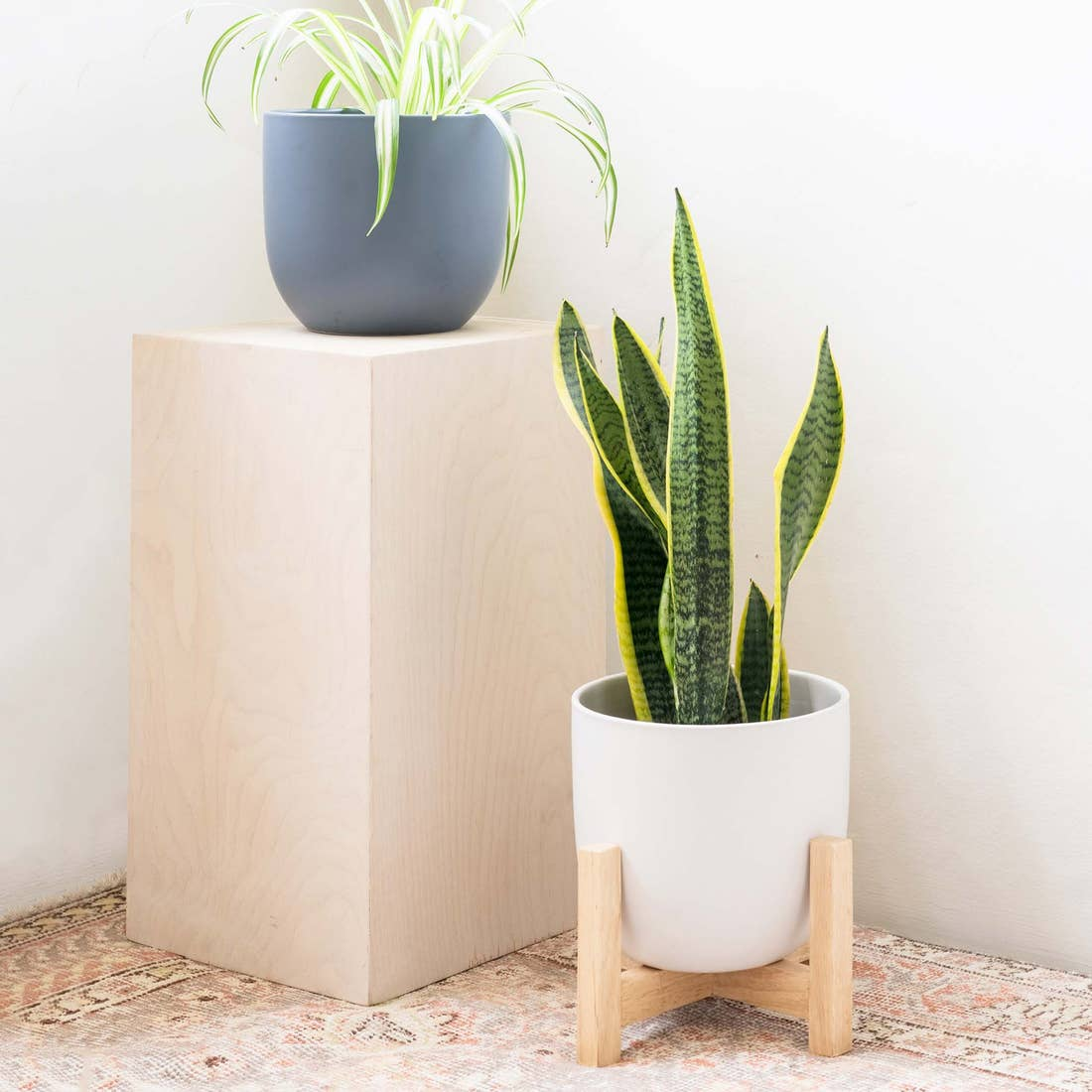 Contour Ceramic Planter in Blue Indigo